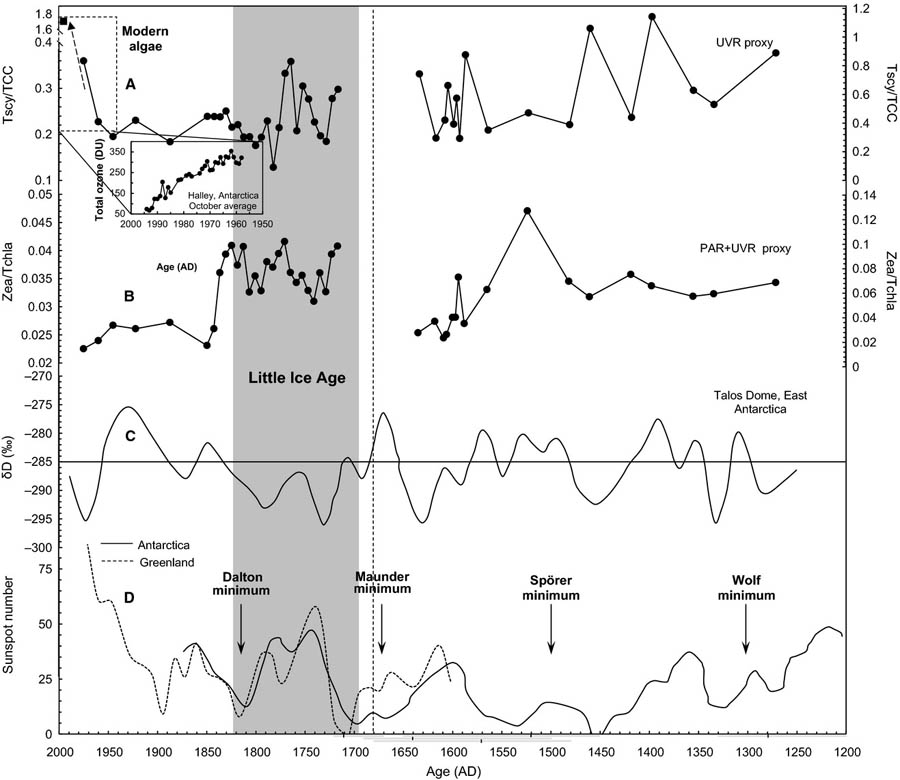 Figure 15: UV proxies based on scytonemine pigment formed by bacteria in algae in Antarctica (top part) show very high levels at the end of the 20th century (~1,8 Tscy/TCC), which results in a likewise 'hockey stick' shape graph that is also present for the perspective of the sun spots (bottom part); for the UV proxies the shape is even steeper for the sunspots.
