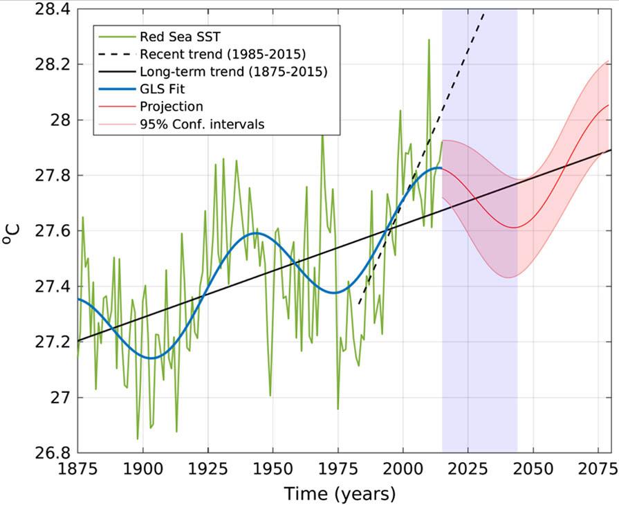 Figuur 16: Projectie van tijdreeksen voor zee-oppervlaktetemperatuur (SST) op basis van de superpositie van lineaire trends en het laagfrequente Atlantic Multidecadal Oscillation signaal (rode lijn), begrensd door de 95% betrouwbaarheidsintervallen (gearceerde rode gebieden). Het jaargemiddelde SST wordt groen weergegeven. De ononderbroken zwarte lijn geeft trends weer op basis van de historische periode (1880-2015); de zwarte stippellijn geeft trends weer op basis van het satelliet tijdperk (1985-2015). Het gearceerde blauwe gebied markeert de periode van de geprojecteerde negatieve trends.